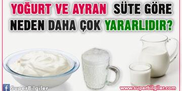 Yoğurt ve ayran süte göre neden daha çok yararlıdır?