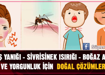 Güneş yanığı - Sivrisinek ısırığı - Boğaz ağrısı - Yorgunluk için Doğal Çözümler 8