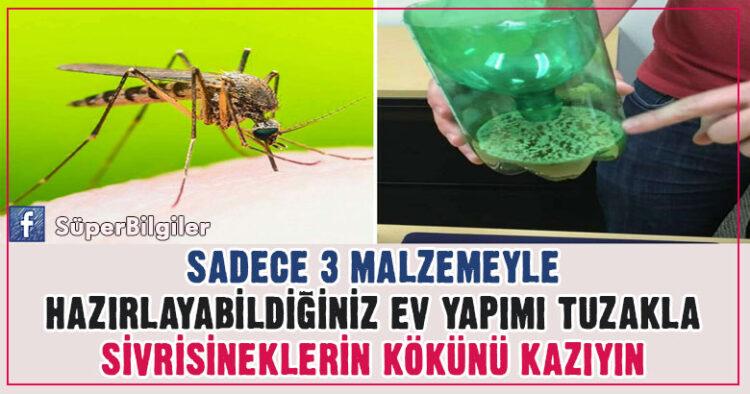 Sadece 3 Malzemeyle Hazırlayabildiğiniz Ev Yapımı Tuzakla Sivrisineklerin Kökünü Kazıyın 6