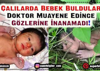 Çalılarda Bebek Buldular – Doktor Muayene Edince Gözlerine İnanamadı 1