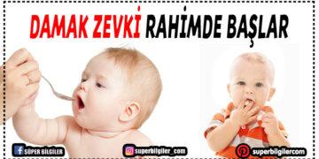 Çocuğun yiyecek tercihleri rahimde başlıyor 2