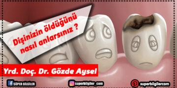 Dişinizin öldüğünü nasıl anlarsınız?