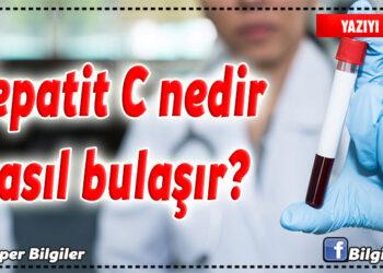 Hepatit C nedir, nasıl bulaşır? 1