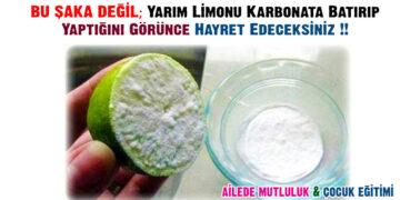 BU ŞAKA DEĞİL; Yarım Limonu Karbonata Batırıp Yaptığını Görünce Hayret Edeceksiniz !! 2