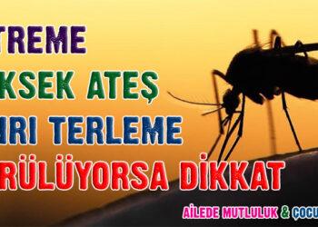 Sıtma nedir? Sıtma hastalığının nedenleri, belirtileri ve tedavisi… 1