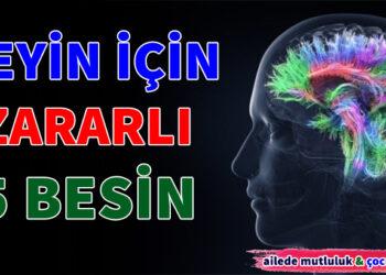 Beyin İçin Zararlı 5 Besin 4