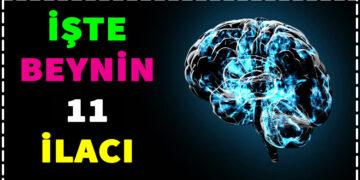 İşte Beynin 11 İlacı 2