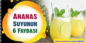 Ananas Suyunun 6 Faydası 6