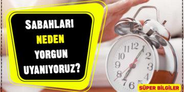Sabahları neden yorgun uyanıyoruz? 2