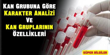Kan Grubuna Göre Karakter Analizi Ve Kan Gruplarının Özellikleri 2