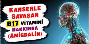 Kanserle Savaşan B17 Vitamini Hakkında (Amigdalin) 2