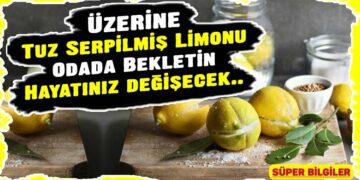 Üzerine Tuz Serpilmiş Limonu Odada Bekletin, Hayatınız değişecek.. 2