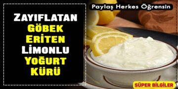 Zayıflatan, Göbek Eriten Limonlu Yoğurt Kürü 2