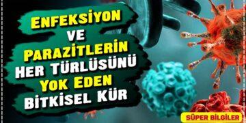 Enfeksiyon ve Parazitlerin Her Türlüsünü Yok Eden Bitkisel Kür 4