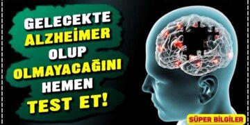 Gelecekte Alzheimer olup olmayacağını hemen test et! 5