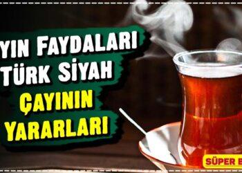 Çayın Faydaları Türk Siyah Çayının Yararları 2