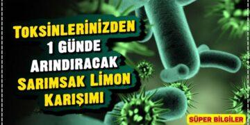 Toksinlerinizden 1 Günde Arındıracak Sarımsak Limon Karışımı 2