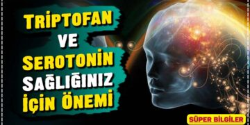 Triptofan ve Serotonin: Sağlığınız İçin Önemi 2