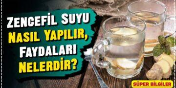 Zencefil Suyu Nasıl Yapılır, Faydaları Nelerdir? 2