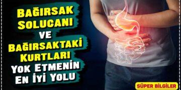 Bağırsak Solucanı ve Bağırsaktaki Kurtları Yok Etmenin En İyi Yolu 2