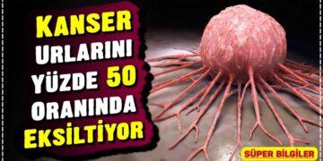 Kanser Urlarını Yüzde 50 Oranında Eksiltiyor 2