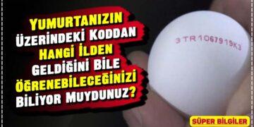 Yumurtanızın Üzerindeki Koddan Hangi İlden Geldiğini Bile Öğrenebileceğinizi Biliyor Muydunuz? 5