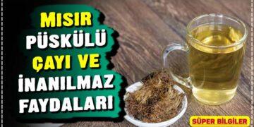 Mısır püskülü çayı ve inanılmaz faydaları 2
