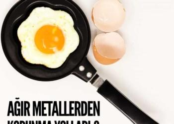 Ağır metallerden korunma yolları -3-