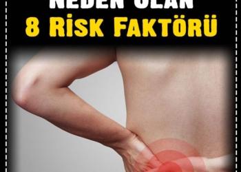 Böbrek Kanserine Neden Olan 8 Risk Faktörü 2