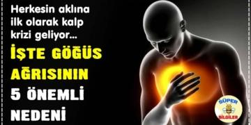 Göğüs ağrısının 5 önemli nedeni! (Her göğüs ağrısı kalp krizini düşündürmesin!) 2