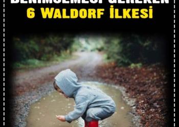 Her Ailenin Benimsemesi Gereken 6 Waldorf İlkesi 2