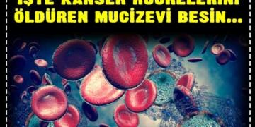 İşte kanser hücrelerini öldüren mucizevi besin... 2