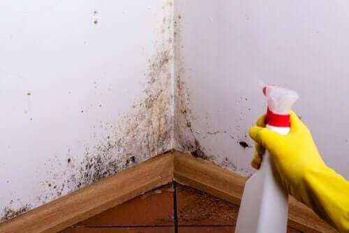 Duvarlar Lekelerini Temizlemek İçin Dört İpucu