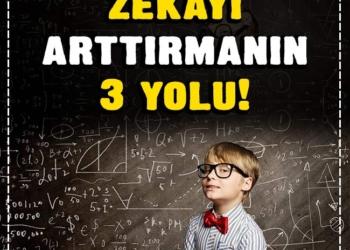 Çocuklarda zekâyı arttırmanın 3 yolu! 2