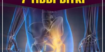 Kemik Sağlığınızı İyileştirecek 7 Tıbbi Bitki 2