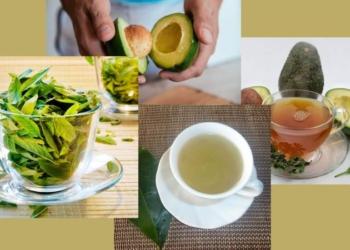 avokado yapragi cayinin faydalari nelerdir avokado yapragi cayi nasil yapilir o39ts78r.jpg