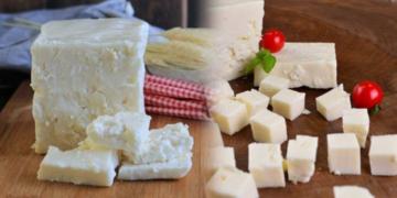 ezine peyniri nedir ve nasil anlasilir ezine peyniri tarifi tbn5wmxp.jpg