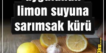 yılda 1 defa uygulanan limon suyuna sarımsak kürü
