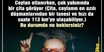 zeki çocuklar neden çalışmaz